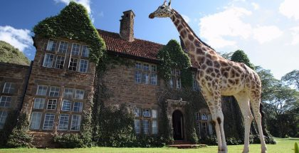 giraffe manor 02