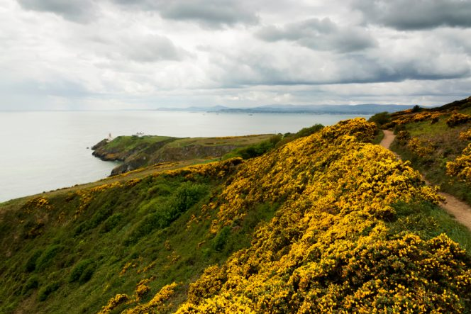 destinos experiencias Howth Peninsula