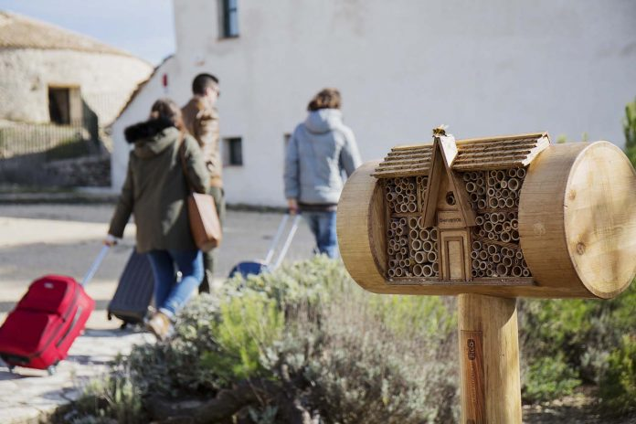 bee&bee hoteles abejas